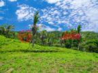 洪都拉斯海湾群岛Roatán的房产,Crawfish Rock,编号36067189