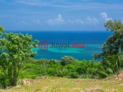 洪都拉斯海湾群岛的房产