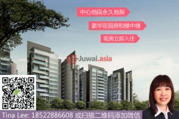 新加坡新加坡4卧4卫新开发的房产