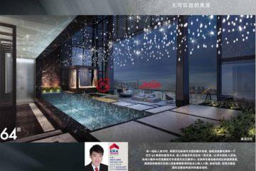 新加坡新加坡5卧9卫新房的房产