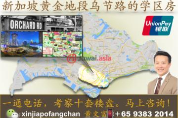 新加坡新加坡3卧2卫新开发的房产