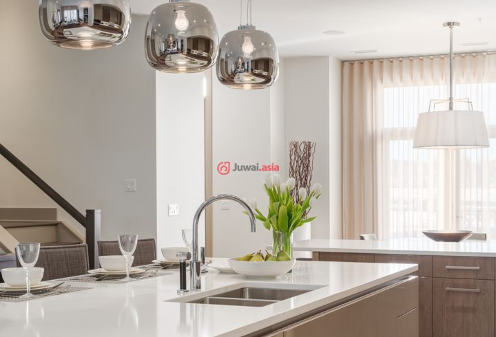 加拿大阿尔伯塔卡尔加里3卧3卫新房的豪宅