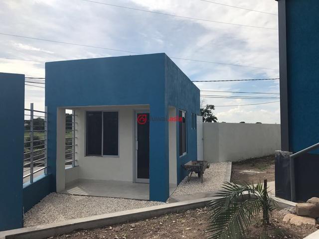 牙买加的房产,编号36755015